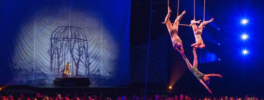 Cirque Du Soleil Concorrência